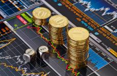Какой рынок или биржу для торговли выбрать новичку